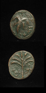 Bronze Coin Minted During the Bar Kochbar Revolt