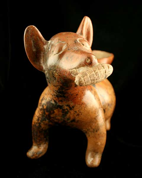 Colima Terracotta Vessel in the Form of a Dog