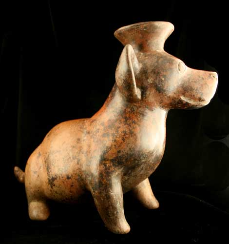 Colima Terracotta Vessel in the Form of a Seated Dog