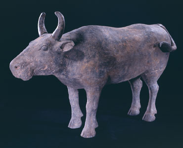 Western Han Terracotta Sculpture of an Ox with Tail and Horns