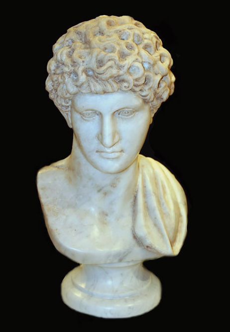 Neo-Classical Marble Bust of Antinous