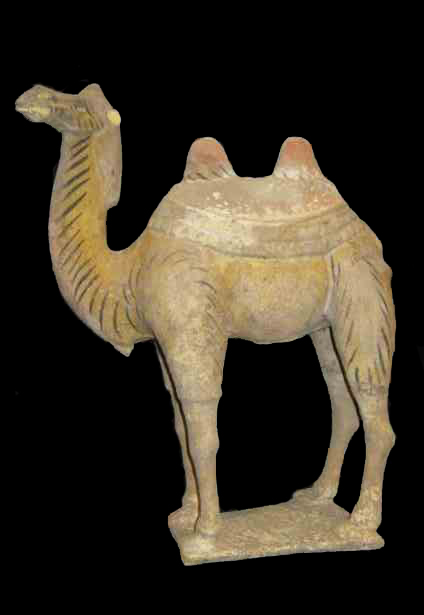 Tang Painted Terracotta Camel