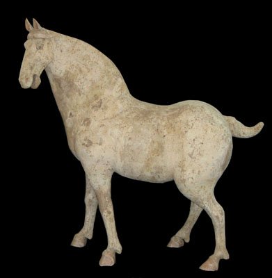 Tang White Painted Pottery Horse