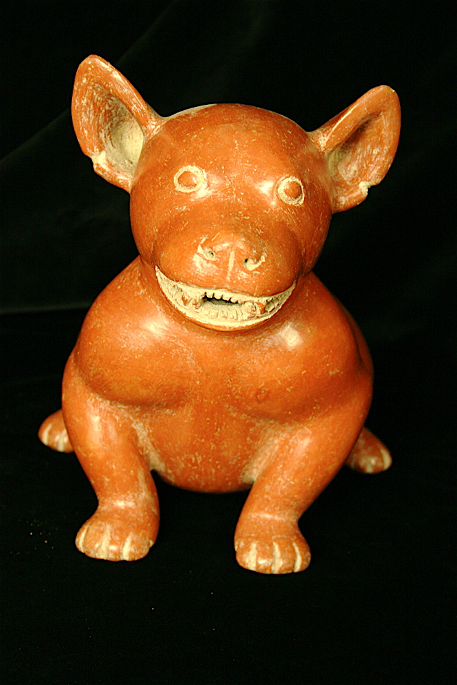 Colima Terracotta Sculpture of a Dog